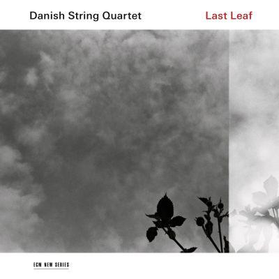 Danish String Quartet / Last Leaf