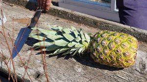Ananas på ett bord.