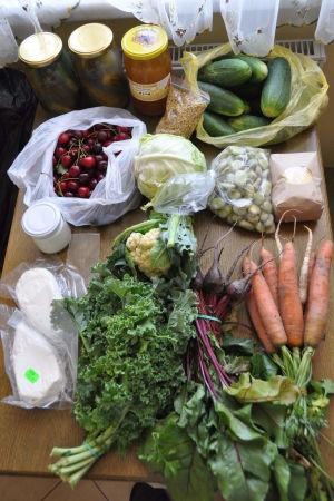 Så här kan ett inköp i ekostugan se ut mitt på sommaren: gurkor, mjölksyrade gurkor, pollen, honung, biggaråer, kål, blomkål, rödbetor, morötter, hirsgryn, färska bondbönor, getyoghurt, getkvarg.