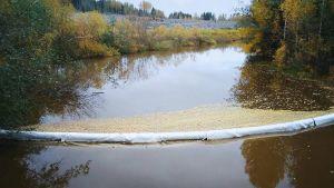 Laahajoessa puomi estämässä tietyömaalta tulevan kiintoaineksen pääsyä veteen.