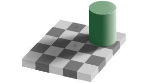 Edward Adelsonin kehittämä illuusio, jossa lieriö heittää varjon ruudukon päälle