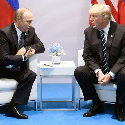 Vladimir Putin ja Donald Trump tapaavat G20-kokouksessa Hampurissa.