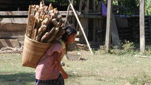 Barn bär ved på den kambodjanska landsbygden.