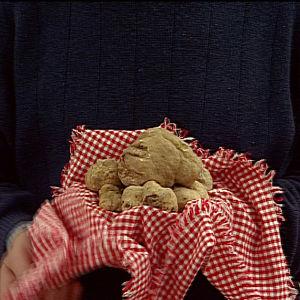 Valkoisia tryffeleitä punavalkoruudullisen kangasliinan päällä.
