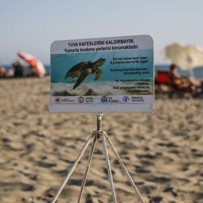 Kyltti aurinkoisella hiekkarannalla Etelä-Turkin Patarassa. Kyltissä on valekarettikilpikonnan kuva ja teksti turkiksi: Älkää siirtäkö pois pesien kehikkoa, ne suojelevat munia.