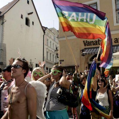 Deltagare i prideparaden promenerar i Tallinn med regnbågsflaggor den 11 augusti 2007.