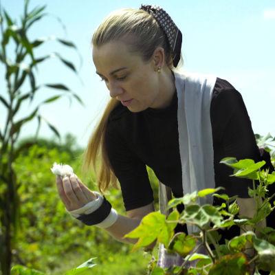 På bilden syns Sandra Hagelstam som plockar bomull på ett fält. Hon tittar på ett stycke bomull som hon håller i ena handen.
