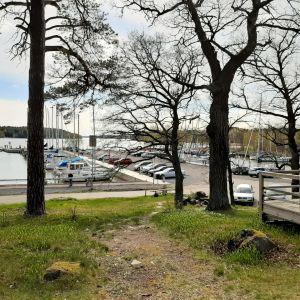 Vy över en gästhamn med flera båtar.