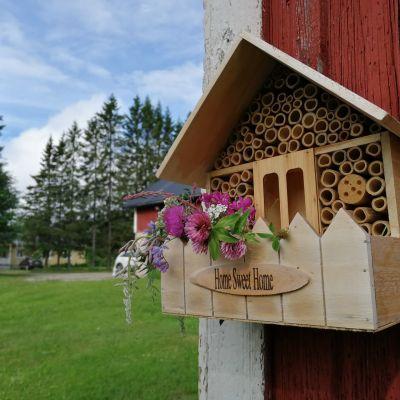 Hyönteishotelli talon seinällä.