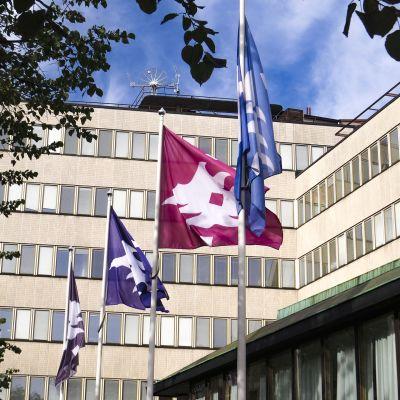Pothania, Helsingin yliopiston rakennuksia.