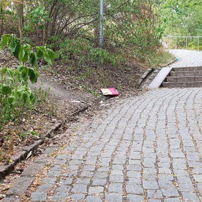 Roskia Samppalinnanpuiston portaissa Turussa