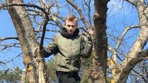 pojke har klättrat upp i träd