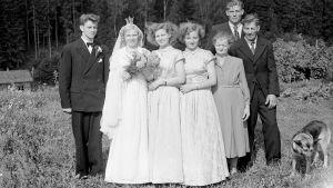 Hääpari ja sukulaisia ulkona ryhmäkuvassa 1950-luvulla.