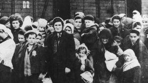 Ungerska judar anländer till Auschwitz i maj 1944.