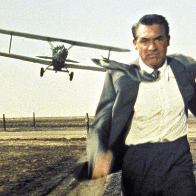 Cary Grant elokuvassa Vaarallinen romanssi