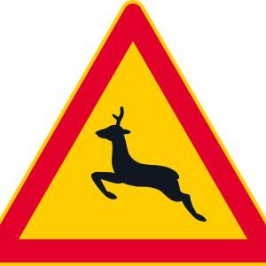 Trafikmärke; varning för rådjur.