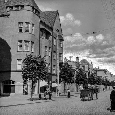 Gustav Arvidssonin kuva
