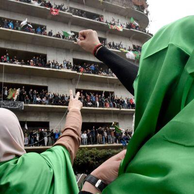 Demonstrationer mot president Bouteflika i Algeriets huvudstad Alger 8.3.2019