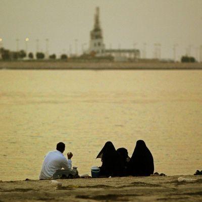 saudier på stranden