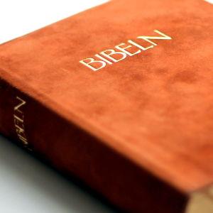 Bibeln.