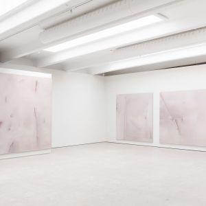 Målningar i rosa nyanser på ett galleri.