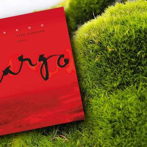 Ilpo Tiihosen teos Largo kumpuisella nurmella