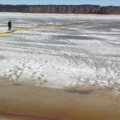 Jormuanlahdella Kajaanissa näkyvät öljyvuodon jäljet.