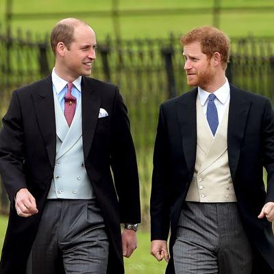 Prinssit William ja Harrykävelemässä rinnakkain.
