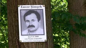 Svartvit bild på Enver Şimşek klistrat på ett träd.