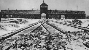 Auschwitz-Birkenaun ratapiha