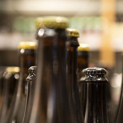 Pienpanimoiden oluita