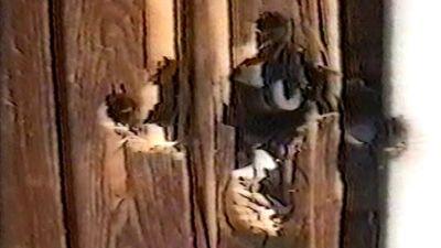 Närbild av kulhål i en dörr