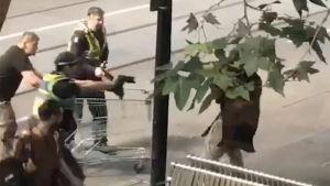 Polisen närmar sig gärningsmannen (bakom grenverket) efter att han knivhuggit flera personer i Melbourne.