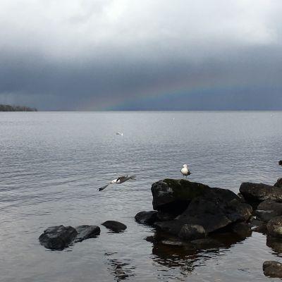 Näsijärvi vapautui jääpeitteestään 19.4.2016