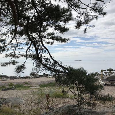 Helsingin kaupungin omistama Kaunissaaren ulkoilupuisto on perustettu vuonna 1959. Noin 100 hehtaarin saaressa on kallioisia ja kivikkoisia rantoja sekä upeita hietikoita.  Se sijaitsee noin 22 kilometriä Helsingistä itään Sipoon saaristossa, lähes ulkomerellä.