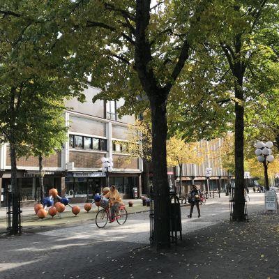 Keravan keskustan kävelykatu, puissa on ruskansävyiset lehdet.