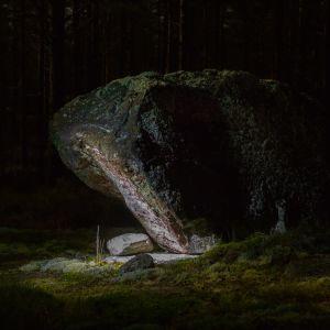 En sten i mörkret. Grön mossa syns också.