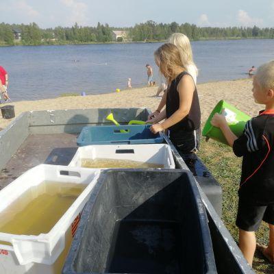 Esa Koivikko hakee lapsensa Islan ja Ivanin kanssa kasteluvettä Oulujoesta joka toinen päivä.