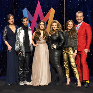 Petra Mede, Henrik Schyffert, Charlotte Perrelli, Sarah Dawn Finer,William Spetz,