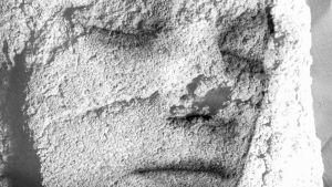 Bild på ansiktet av en sovande kvinna.