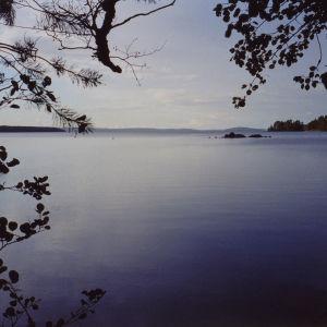järvimaisema, värikuva