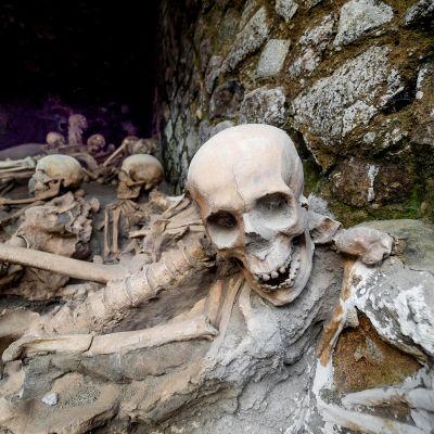 Vesuviuksen purkauksessa vuonna 79 kuolleiden henkilöiden luurankoja.
