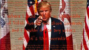 Bild på Martha Roslers verk som föreställer USA:s president Donald Trump.