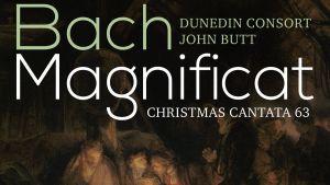 Bach / Dunedin