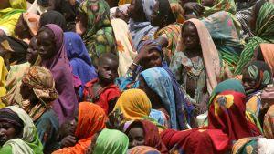 Flyktinglägret Gouroukoum i Tchad