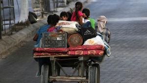 Palestinier flyr Gaza.