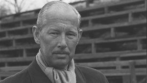 Curt Lincoln på Djurgårdens läktare, 1963.