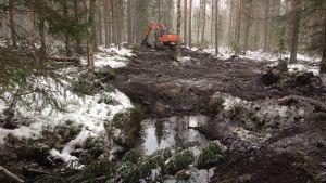 metsäkone ojitetulla suo- ja metsäalueella