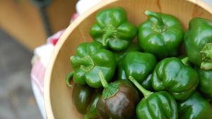 gröna paprikor på träfat