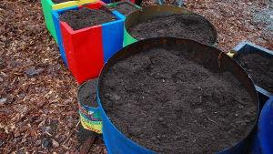 Färgglada plåtkrukor fyllda med jord